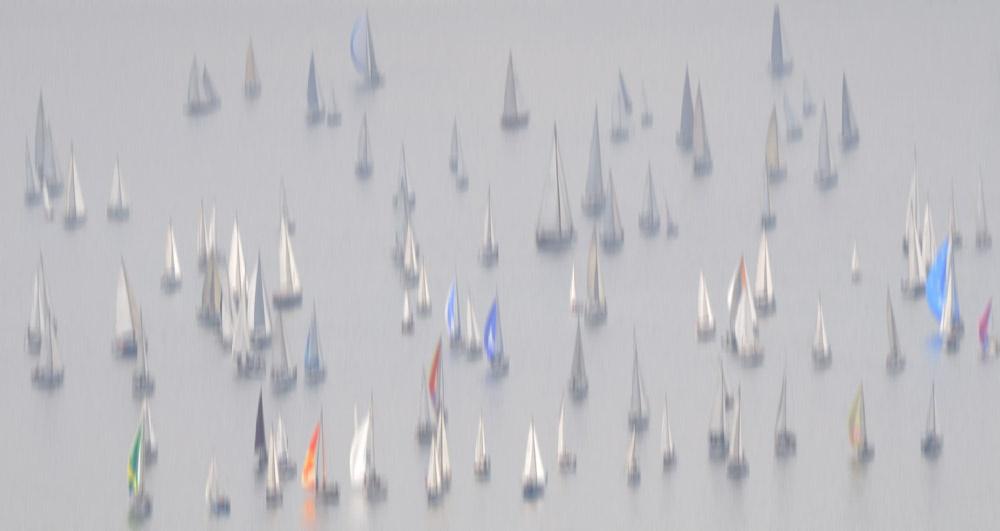14606.Sailboats 6