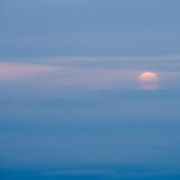Frost Moon I