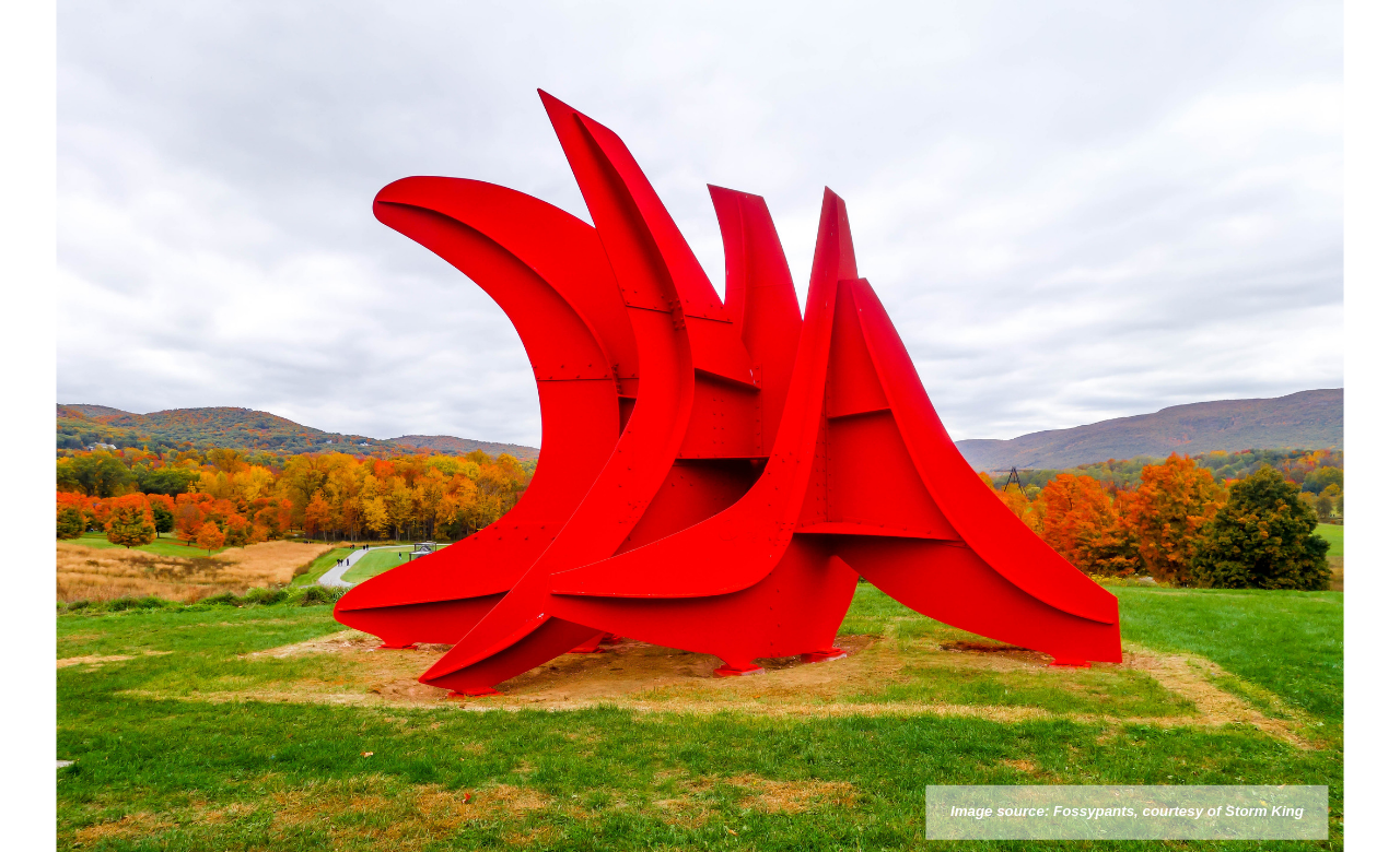 Image source_ Fossypants, courtesy of Storm King