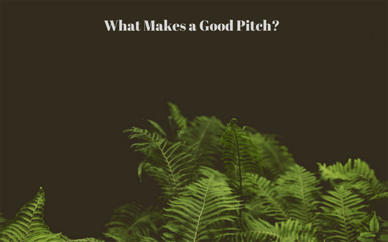 What-Makes-a-Good-Pitch-2-1